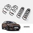 [MOBIS] Hyundai Sonata New Rise - TUIX Dynamic Coil Spring