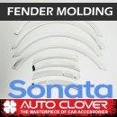 [AUTO CLOVER] Hyundai Sonata New Rise - Fender Chrome Molding Set (B571)