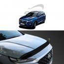 [KYOUNG DONG] Hyundai Santa Fe TM - Smoked Bonnet Guard Molding (D-662)
