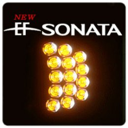 [XLOOK] Hyundai New EF Sonata - LED 2Way Turn Signal Modules (RZ)