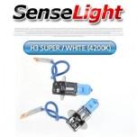 [SENSE LIGHT] H3 Super White (4200K) Halogen Lamps