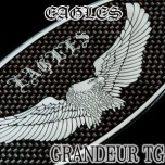 [ARTX] Hyundai Grandeur TG - Eagles Carbon Look Tuning Emblem Set