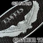 [ARTX] Hyundai Grandeur TG - Eagles Carbon Look Tuning Emblem Set