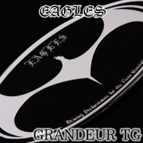 [ARTX] Hyundai Grandeur TG - Luxury Eagles Tuning Emblem Set