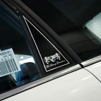 [ARTX] GM-Daewoo Winstorm - Luxury Generation C Pillar Molding Set