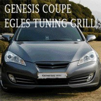 [ARTX] Hyundai Genesis Coupe - Eagles Radiator Tuning Grille