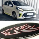 [ARTX] KIA All New Morning 2017 - Wild Wolf Tuning Emblem Set